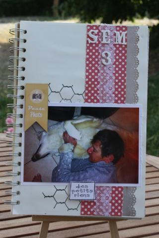 My family Diary - Liliscrap33 _ MAJ le 28/09 Sem_311