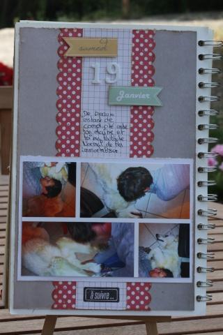 My family Diary - Liliscrap33 _ MAJ le 28/09 Sem_3_10