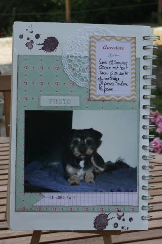 My family Diary - Liliscrap33 _ MAJ le 28/09 Sem_510