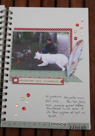 My family Diary - Liliscrap33 _ MAJ le 28/09 Sem_8_10