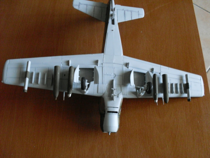 a1h skyraider au 1/48 Sdc10212