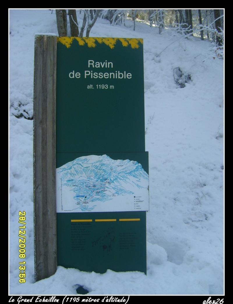Le Grand Echaillon (26), à 1200 mètres d'altitude Dacemb95