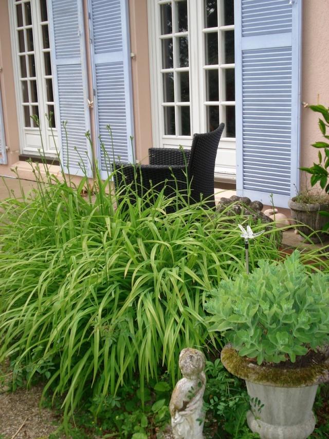 le nouveau jardin de Giroflée - Page 2 0mini011
