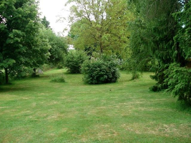le nouveau jardin de Giroflée - Page 2 0mini110