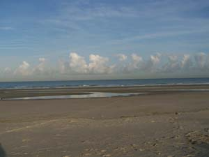 AGRIKA à la plage (13 novembre 2008) + vidéo Prom-p10