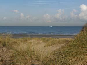 AGRIKA à la plage (13 novembre 2008) + vidéo Prom-p11