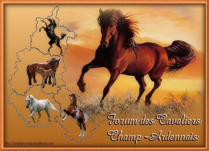 Cavaliers de la Champagne-Ardenne Chevau10