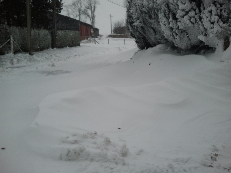 Beaucoup de neige par chez vous ? Photo027