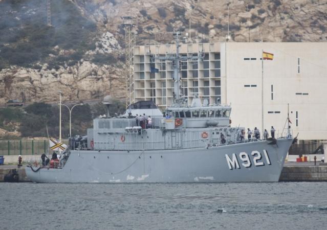 M921 Lobelia Img_3312