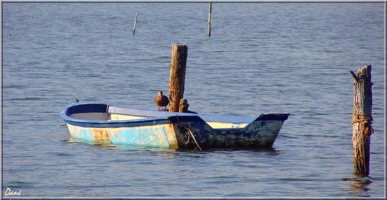 sur le canal tout près de Port la Nouvelle 1_atan10