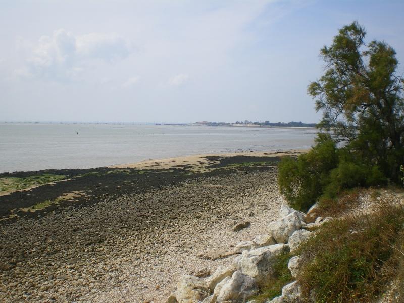 le tour de l'île d'Aix Imgp0715