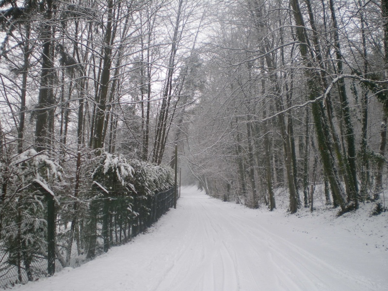 neige dans l'oise Imgp2339