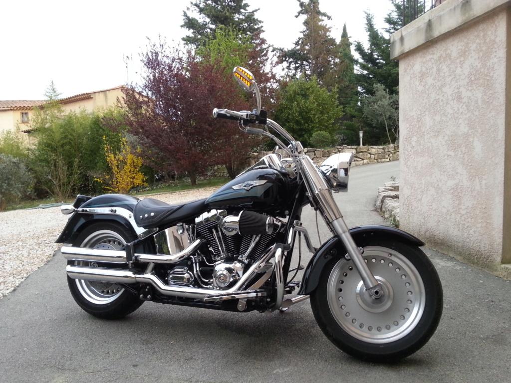 Combien de Softail sur le forum Passion-Harley - Page 15 20140314