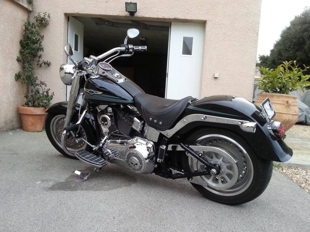 Combien de Softail sur le forum Passion-Harley - Page 15 20140315