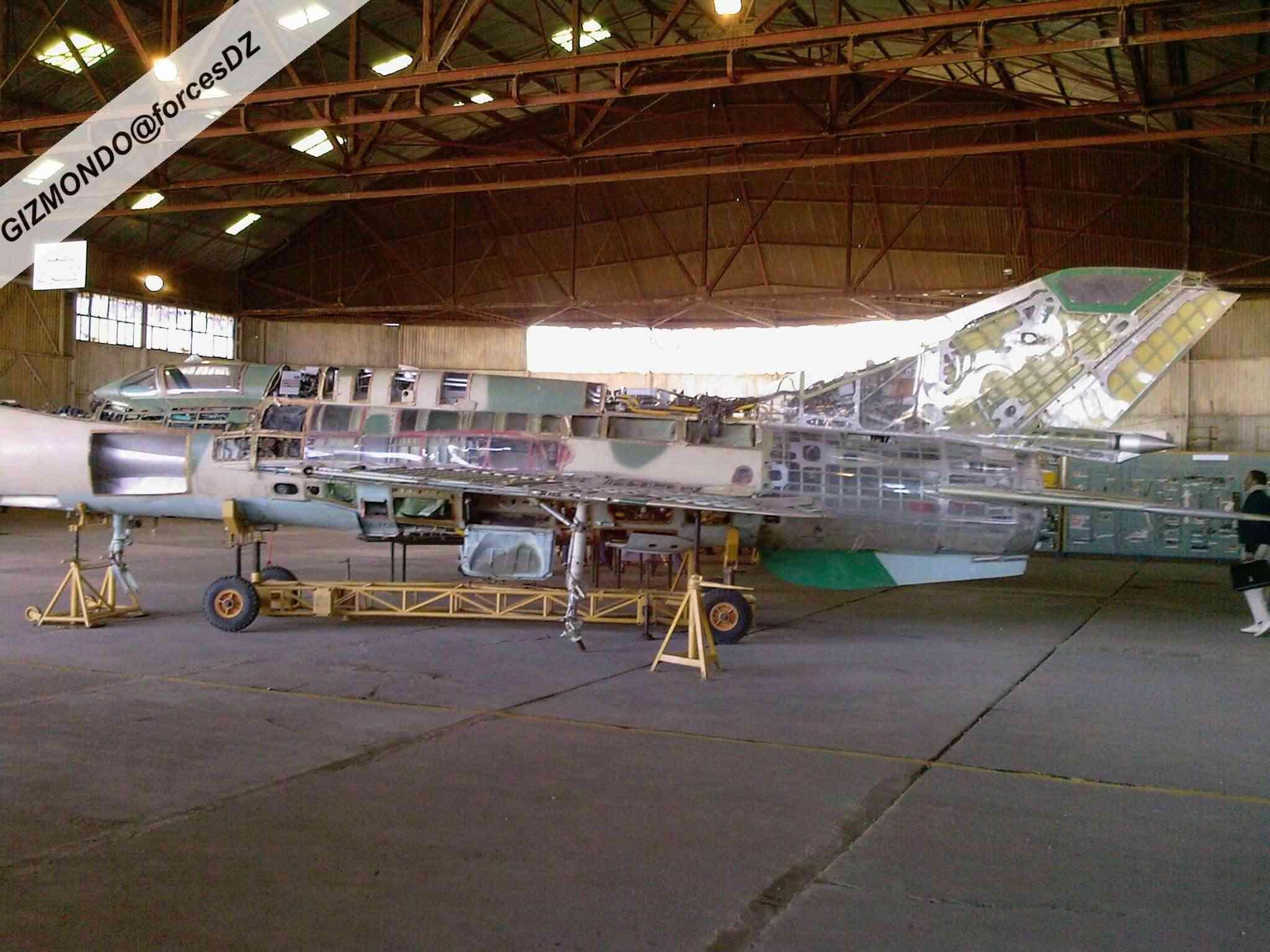 طائرة مقاتلة إعتراضية ميغ-21  MIG-21 Photos28