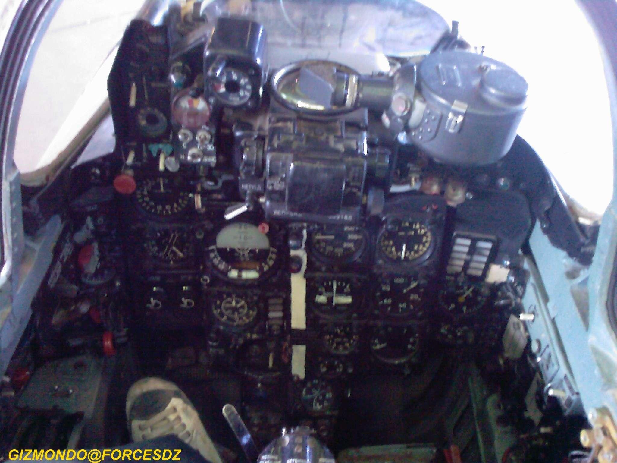 طائرة مقاتلة إعتراضية ميغ-21  MIG-21 Photos33