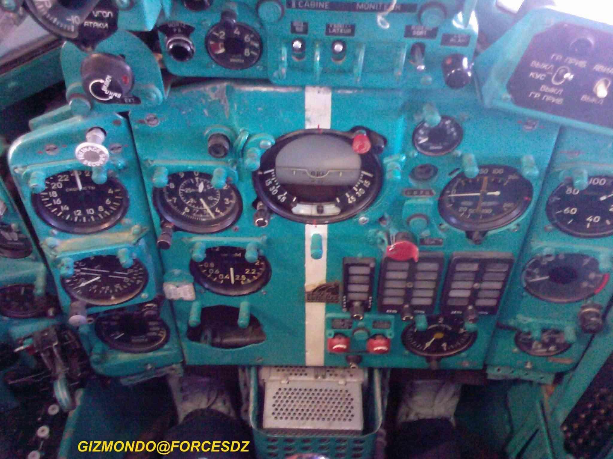 طائرة مقاتلة إعتراضية ميغ-21  MIG-21 Photos34