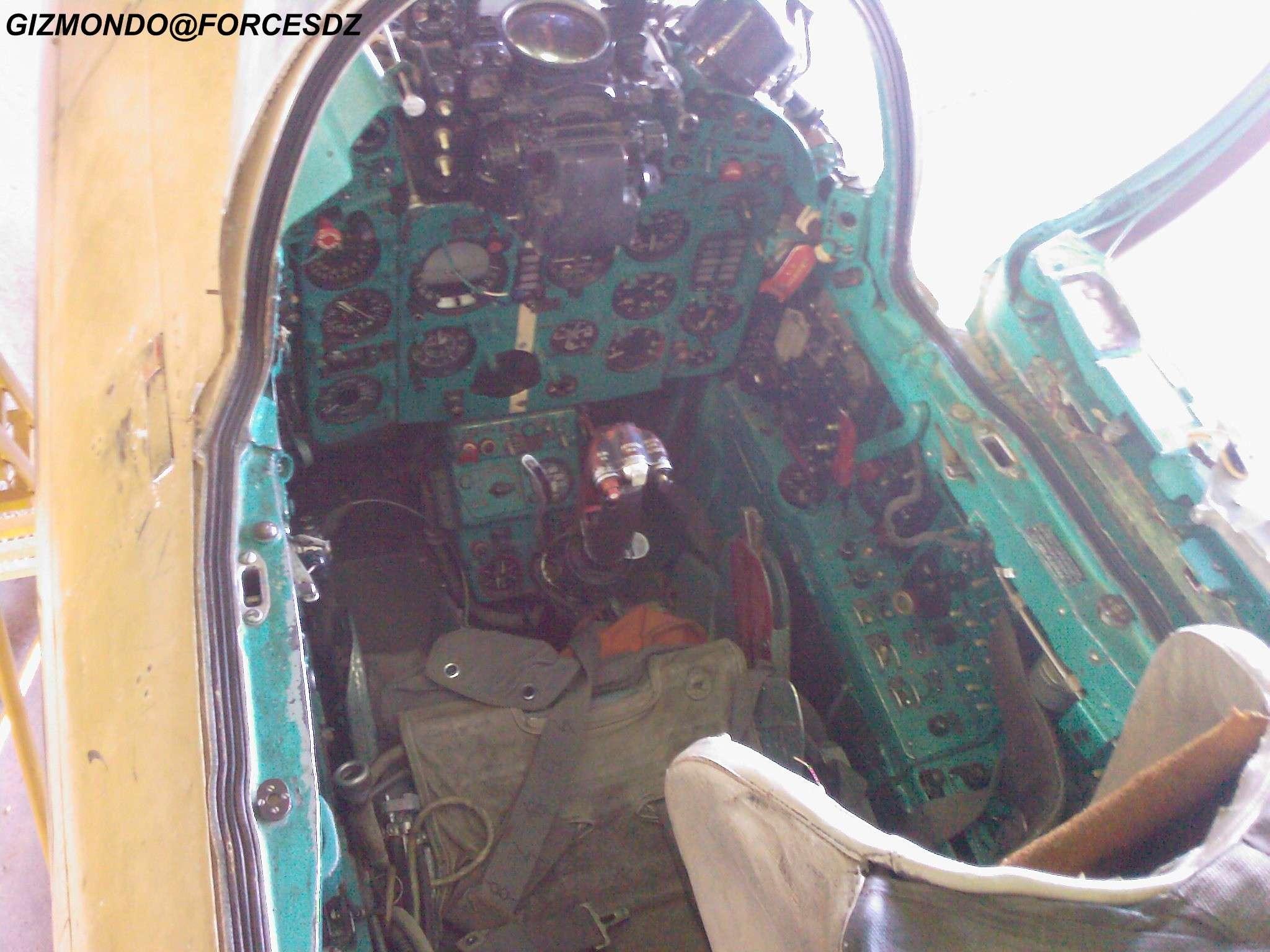 طائرة مقاتلة إعتراضية ميغ-21  MIG-21 Photos38