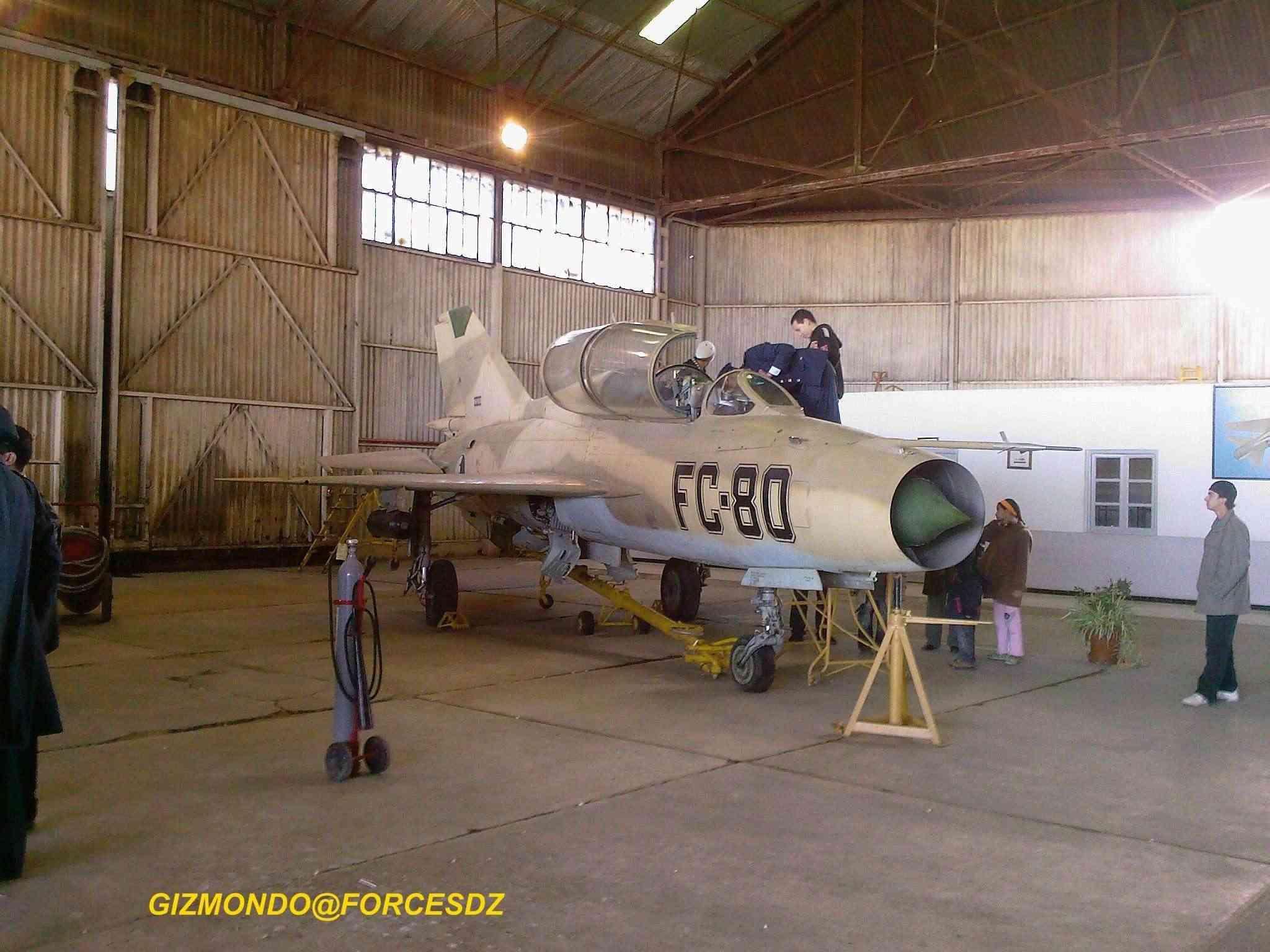 طائرة مقاتلة إعتراضية ميغ-21  MIG-21 Photos43