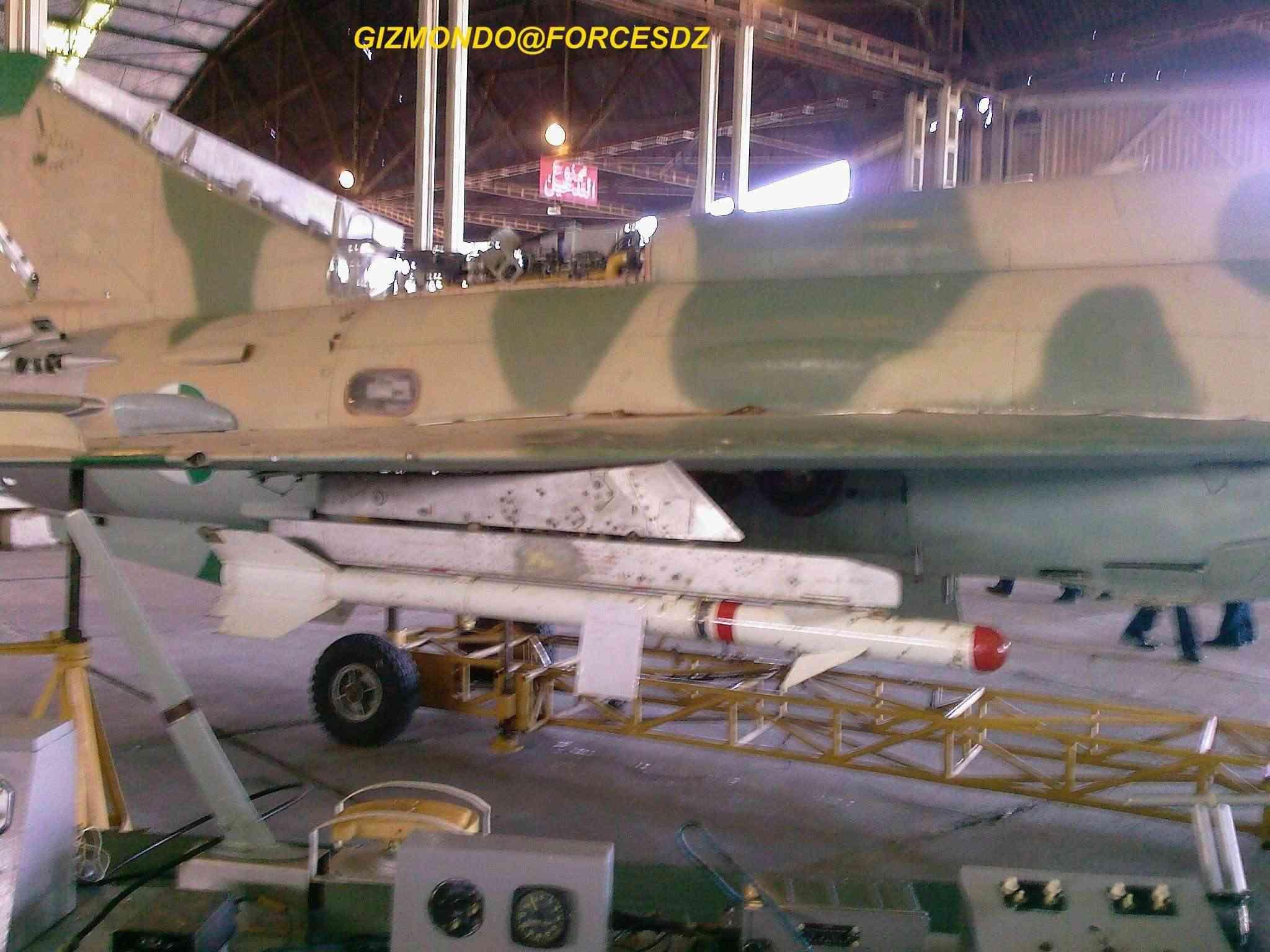 طائرة مقاتلة إعتراضية ميغ-21  MIG-21 Photos46