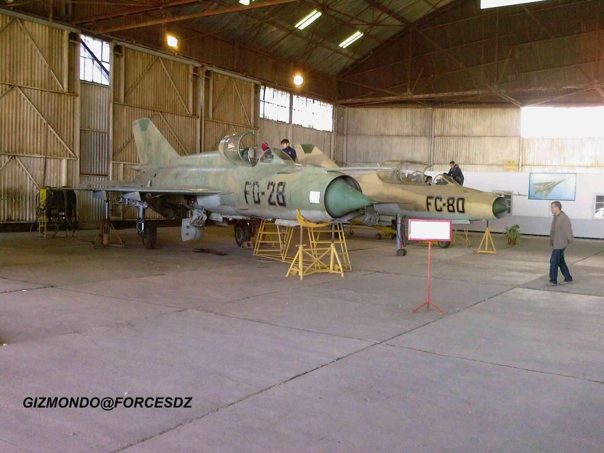 طائرة مقاتلة إعتراضية ميغ-21  MIG-21 Photos49