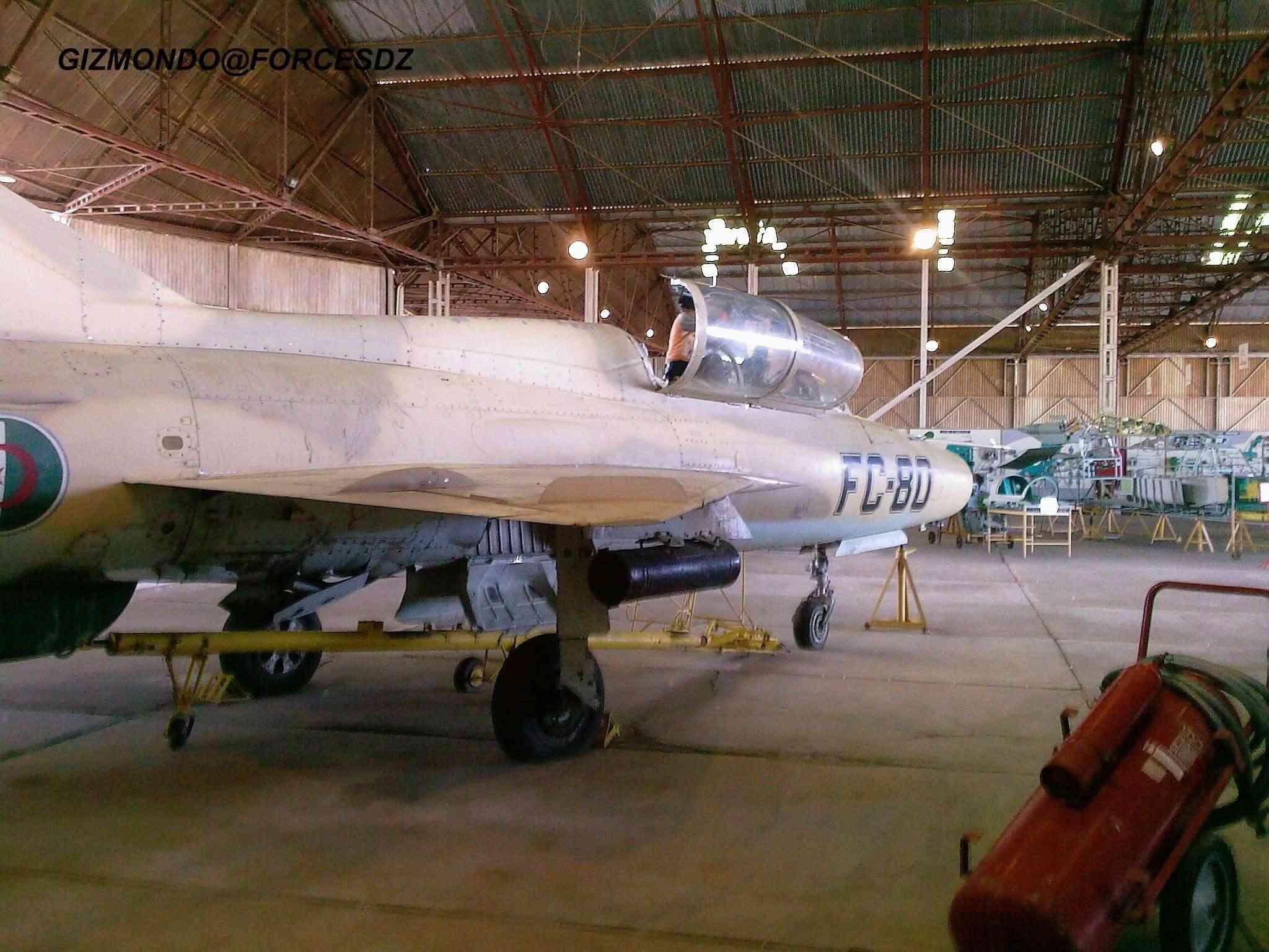 طائرة مقاتلة إعتراضية ميغ-21  MIG-21 Photos51