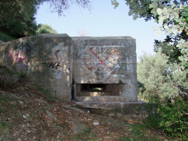 Colline de Costebelle - Hyères (83) Dscf0310