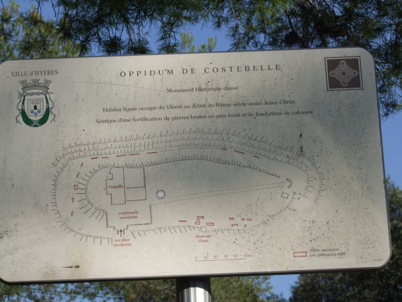 Colline de Costebelle - Hyères (83) Dscf0313