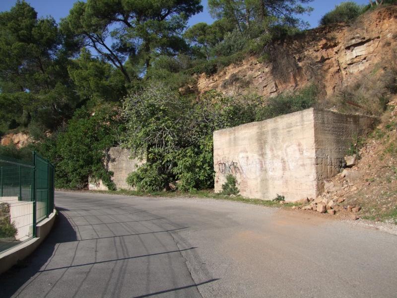 Colline de Costebelle - Hyères (83) Dscf0314