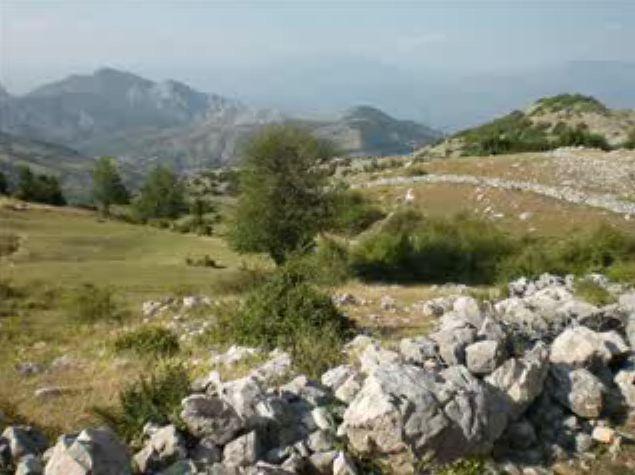 Foto peisazhe nga Natyra e Gurit Bardhë 110