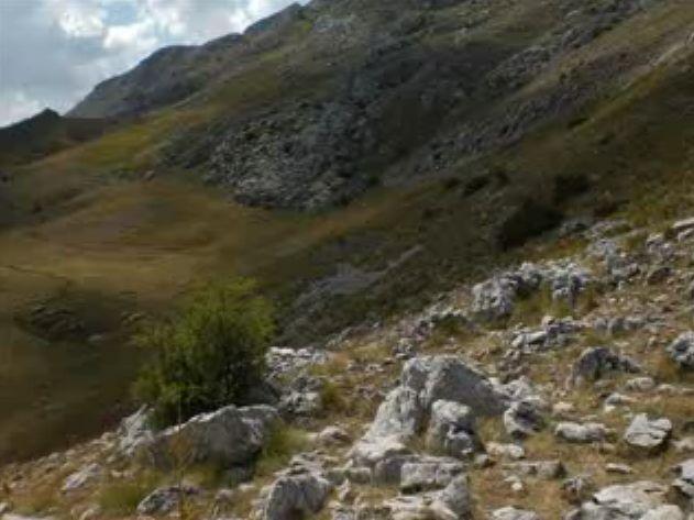 Foto peisazhe nga Natyra e Gurit Bardhë 1110