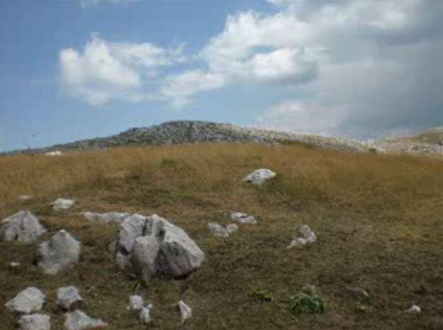 Foto peisazhe nga Natyra e Gurit Bardhë 1510