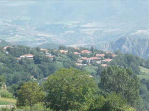 Foto peisazhe nga Natyra e Gurit Bardhë 2010