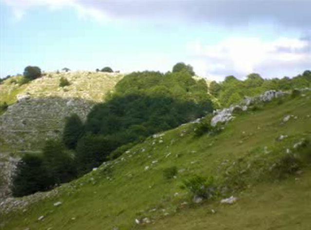 Foto peisazhe nga Natyra e Gurit Bardhë 210