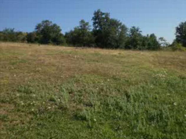 Foto peisazhe nga Natyra e Gurit Bardhë 2110
