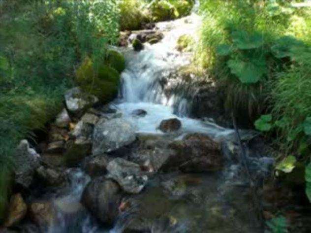 Foto peisazhe nga Natyra e Gurit Bardhë 2310