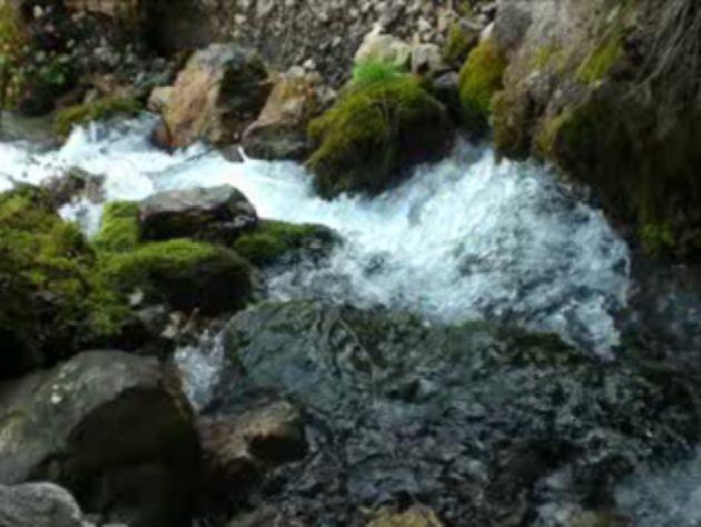 Foto peisazhe nga Natyra e Gurit Bardhë 2810