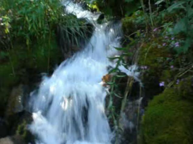 Foto peisazhe nga Natyra e Gurit Bardhë 3010