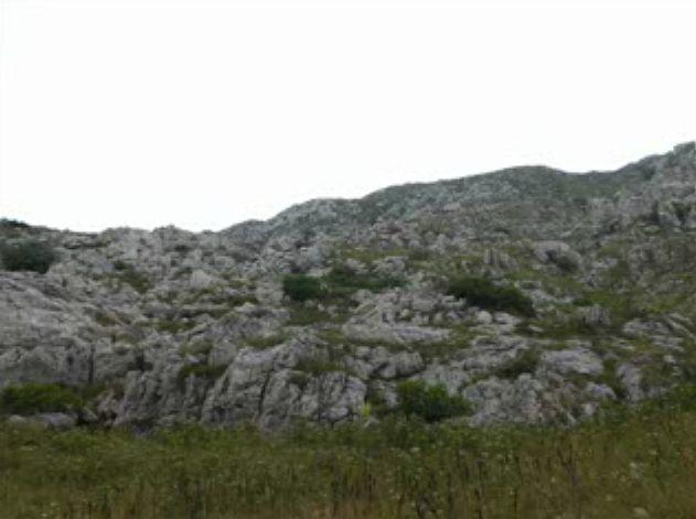 Foto peisazhe nga Natyra e Gurit Bardhë 310
