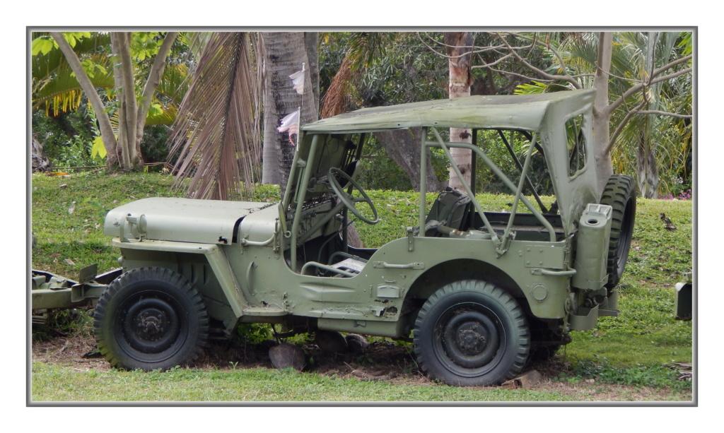 Quelques véhicules Américains  (d'époque ?) en N-C Dscn4113