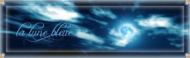 La Lune Bleue - Portail Logo_f10