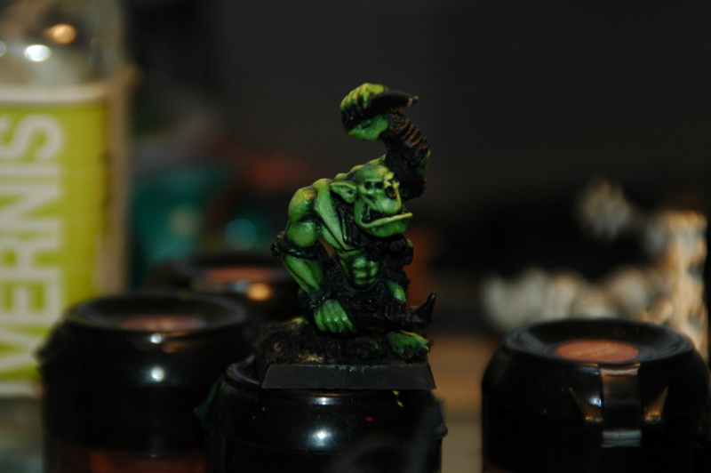 [WHB/O&G] Une Waaagh Sauvage - Page 2 Dsc_2219