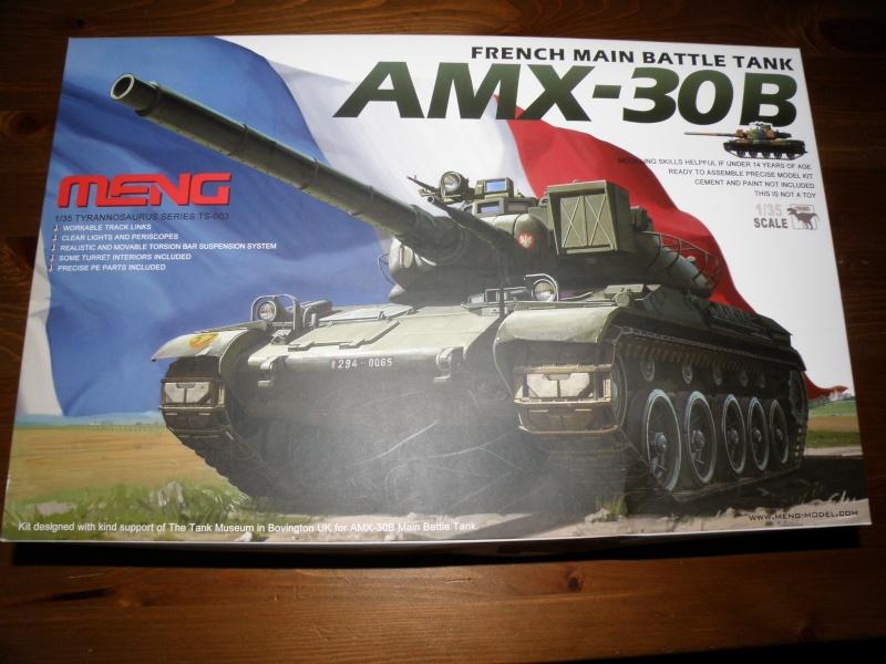 peinture - amx30 meng P2080010