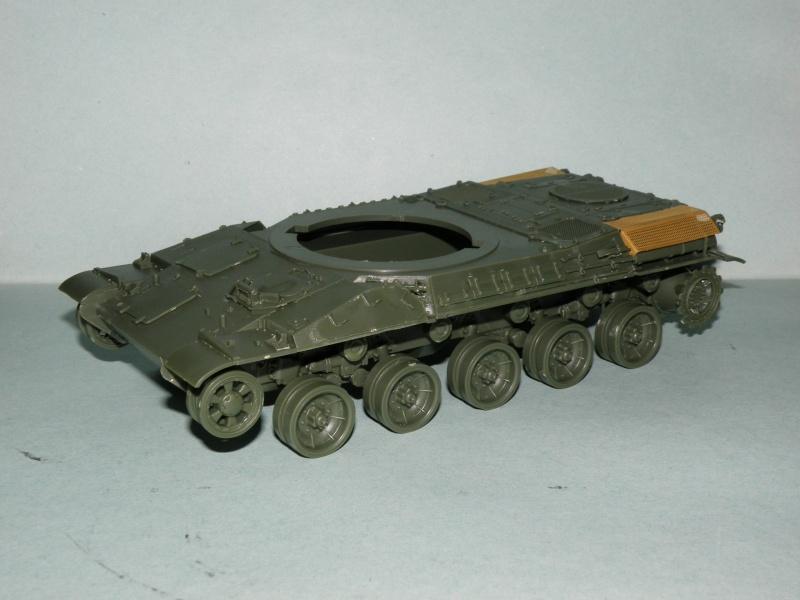 amx30 meng P2090010