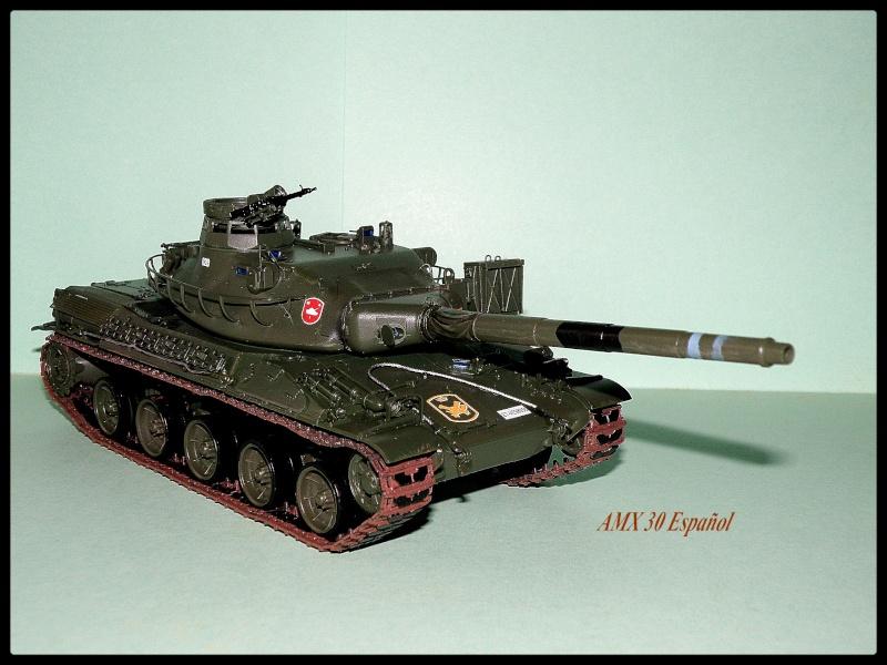 amx30 meng P3060012