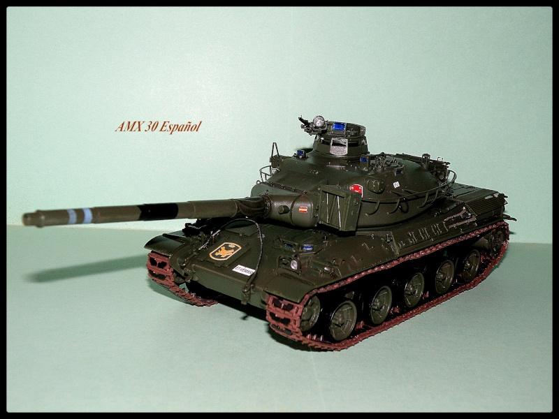 amx30 meng P3060013