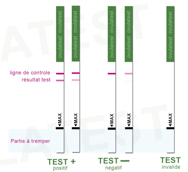 Tableau des essayeuses Juillet 2013 Testov10
