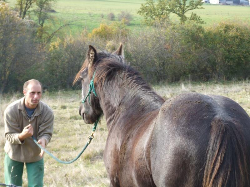 Bentley de la vallée du Lomont (News page 5) 2008_110