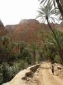les gorges d'Aït Mansour A_tafr10