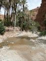les gorges d'Aït Mansour N_tafr10